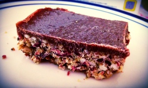 choc cranberry slice